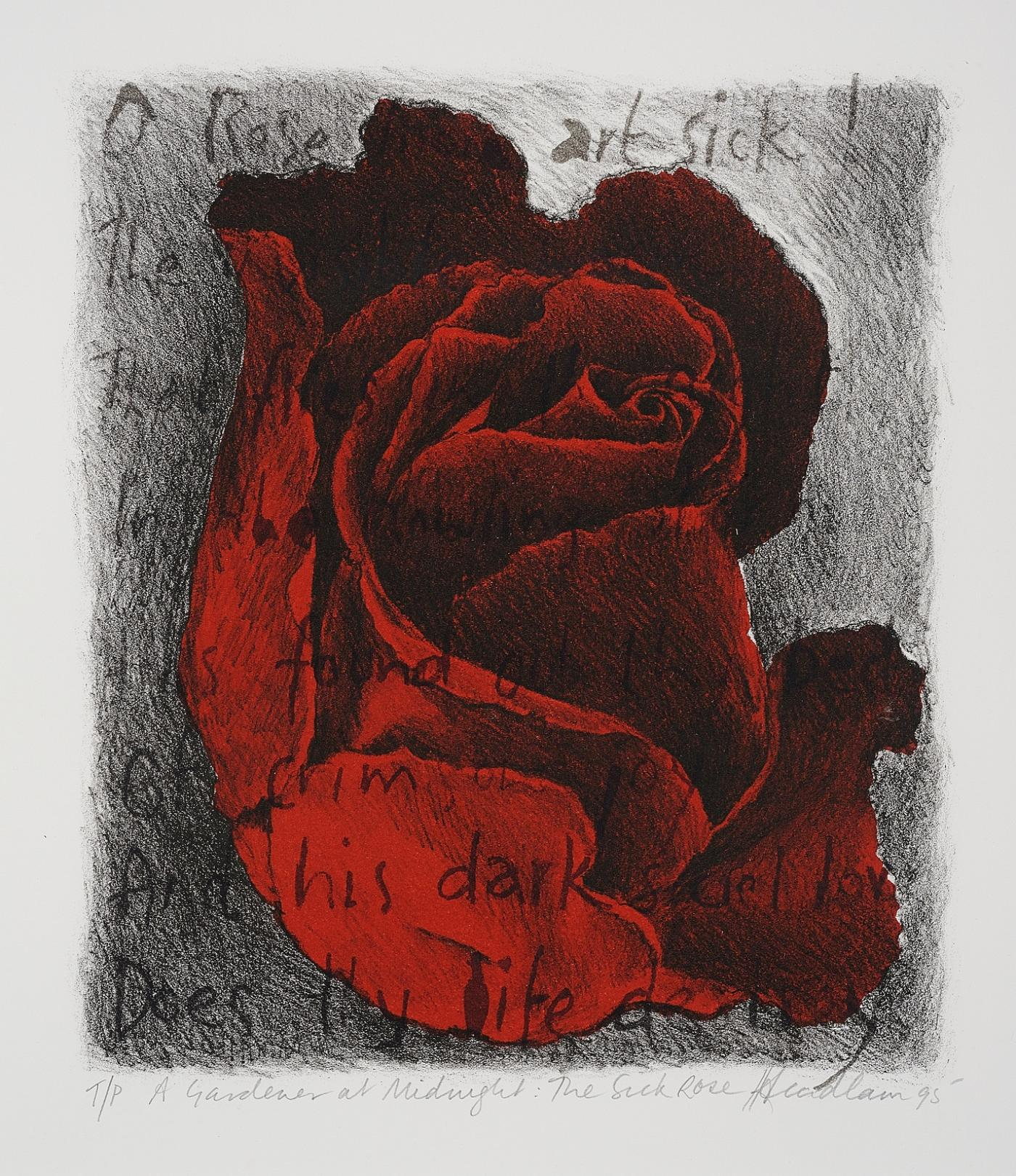 """the sick rose essay I chose to write about, """"the sick rose,"""" by william blake i found this poem to be very interesting it can be interpreted in many different ways in a biography about symbolism by the hutchinson unabridged encyclopedia, they point out the fact that blake uses many words such as bed, worm, love, and joy all of [."""